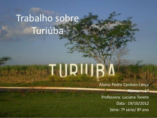 Trabalho sobre   Turiúba                 Aluno: Pedro Cardoso Lança                                  Número: 17           ...