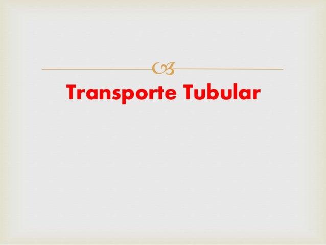  Transporte Tubular