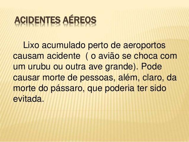 ACIDENTES AÉREOS Lixo acumulado perto de aeroportos causam acidente ( o avião se choca com um urubu ou outra ave grande). ...