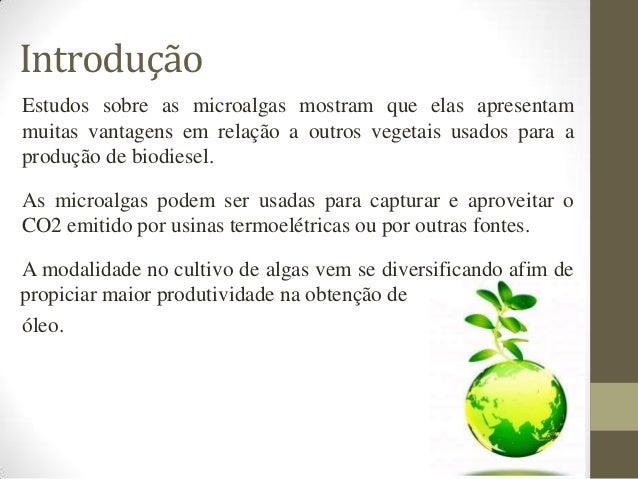 Introdução Estudos sobre as microalgas mostram que elas apresentam muitas vantagens em relação a outros vegetais usados pa...