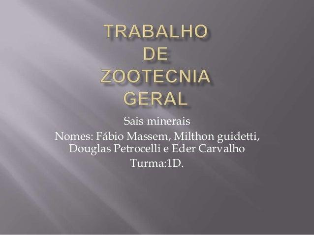 Sais minerais Nomes: Fábio Massem, Milthon guidetti, Douglas Petrocelli e Eder Carvalho Turma:1D.
