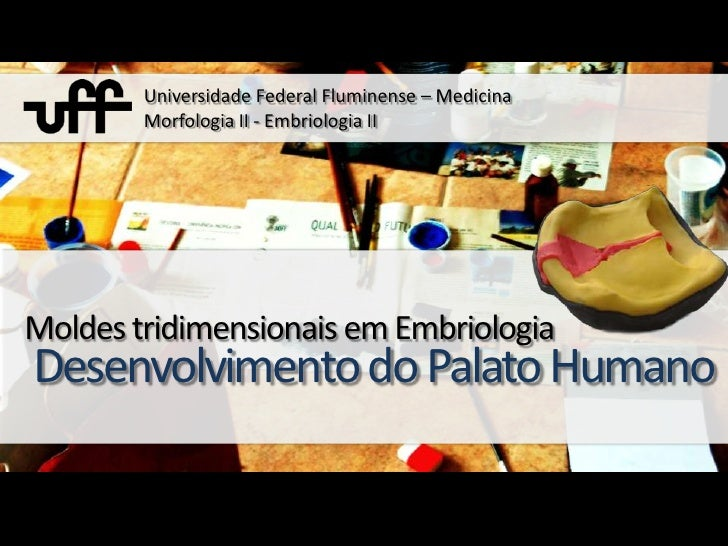 Universidade Federal Fluminense – MedicinaMorfologia II - Embriologia II <br />Moldes tridimensionais em Embriologia<br />...