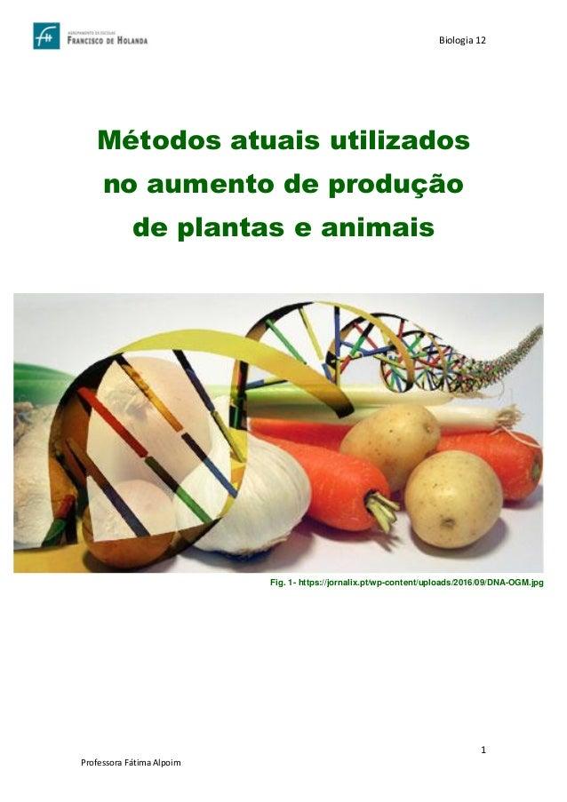 Trabalho Escrito Mtodos Atuais Utilizados No Aumento De Produo De Plantas E Animais on Pare Numbers