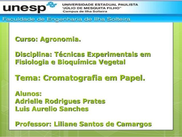 Curso: Agronomia.Disciplina: Técnicas Experimentais emFisiologia e Bioquímica VegetalTema: Cromatografia em Papel.Alunos:A...