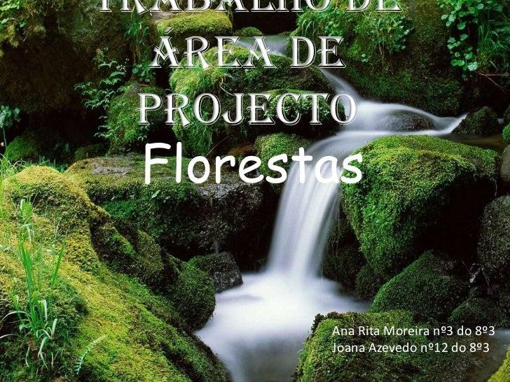 Trabalho de área de projecto<br />Florestas<br />Ana Rita Moreira nº3 do 8º3<br />Joana Azevedo nº12 do 8º3<br />