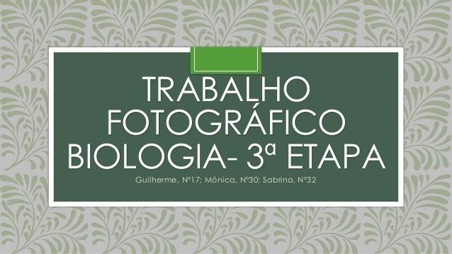 TRABALHO FOTOGRÁFICO BIOLOGIA- 3ª ETAPAGuilherme, Nº17; Mônica, Nº30; Sabrina, Nº32