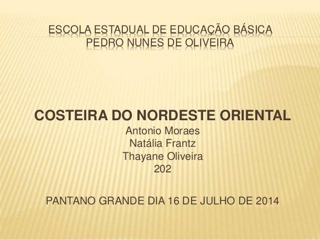 ESCOLA ESTADUAL DE EDUCAÇÃO BÁSICA  PEDRO NUNES DE OLIVEIRA  COSTEIRA DO NORDESTE ORIENTAL  Antonio Moraes  Natália Frantz...