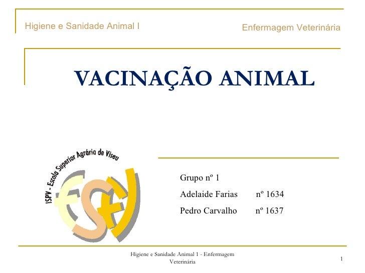 VACINAÇÃO ANIMAL Enfermagem Veterinária  Higiene e Sanidade Animal 1 - Enfermagem Veterinária Grupo nº 1 Adelaide Farias  ...