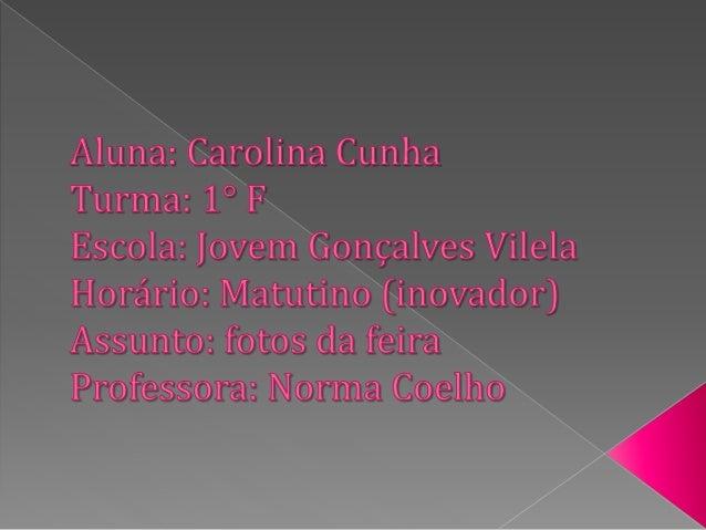 Aluna:  Carolina Cunha  Turma:  1°   Escola:  Jovem *Gonçalves Vilela Horário:  Matutino efsinovador) Assunto:  foto. s da...