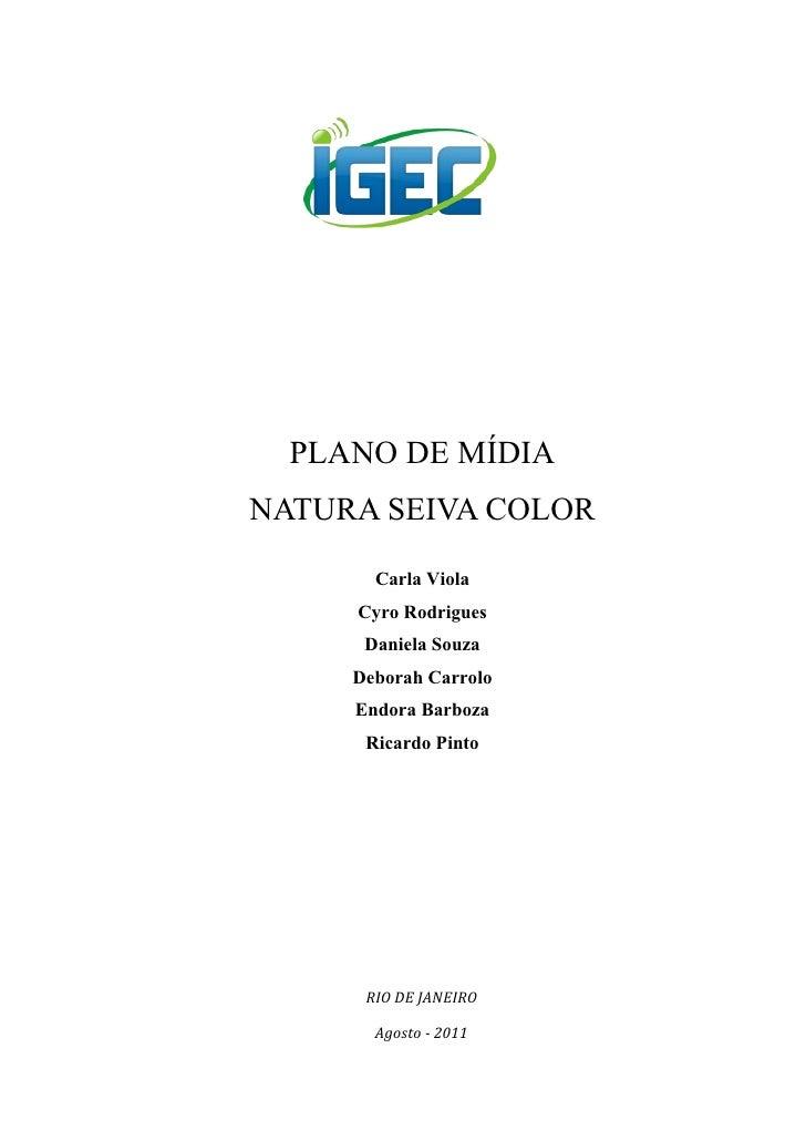 PLANO DE MÍDIANATURA SEIVA COLOR       Carla Viola     Cyro Rodrigues      Daniela Souza     Deborah Carrolo     Endora Ba...