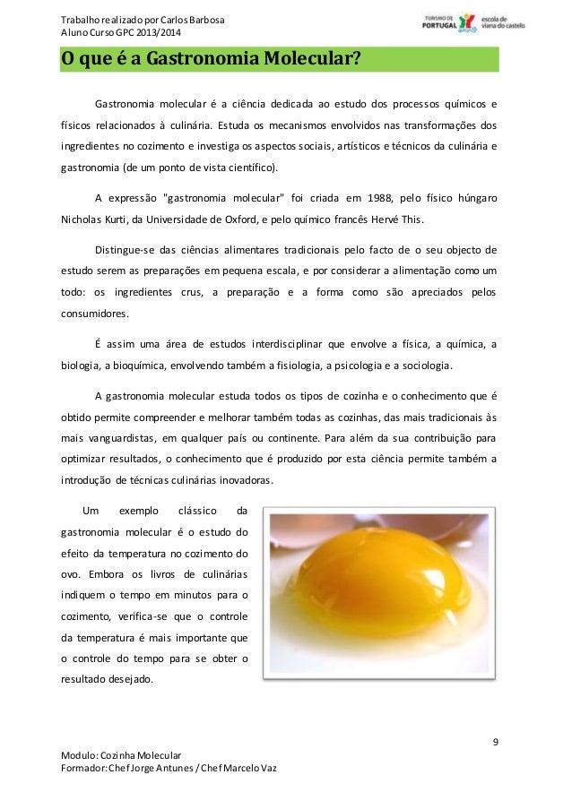 Gastronomia molecular ci ncia na cozinha for Tecnicas de cocina molecular