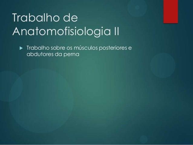 Trabalho de Anatomofisiologia II   Trabalho sobre os músculos posteriores e abdutores da perna