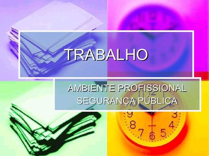TRABALHO AMBIENTE PROFISSIONAL SEGURANÇA PÚBLICA