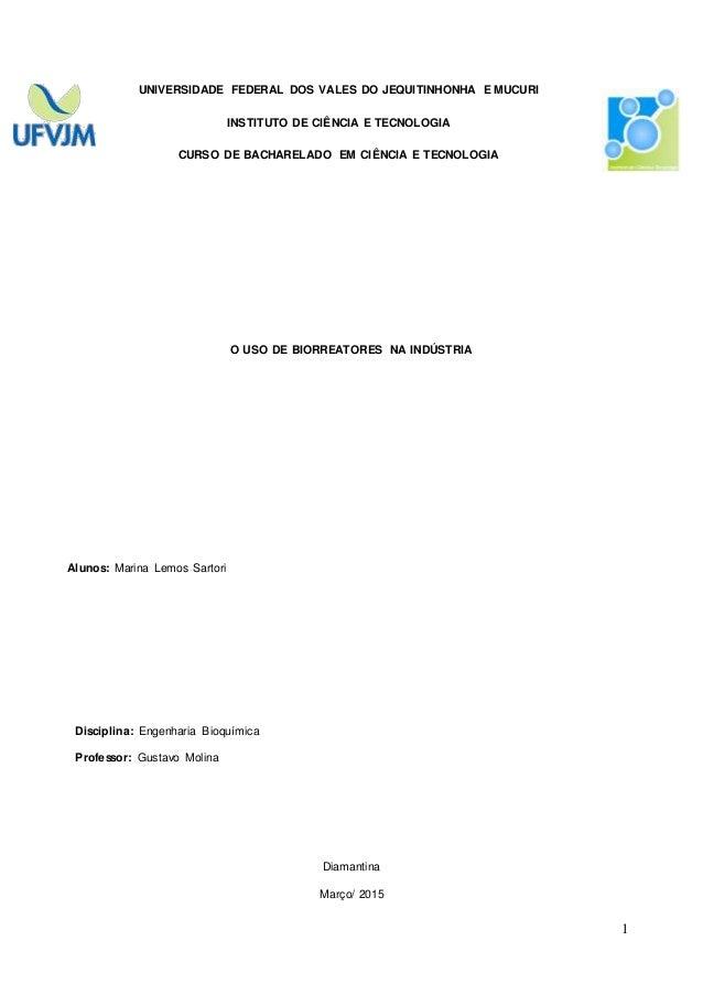 1 UNIVERSIDADE FEDERAL DOS VALES DO JEQUITINHONHA E MUCURI INSTITUTO DE CIÊNCIA E TECNOLOGIA CURSO DE BACHARELADO EM CIÊNC...