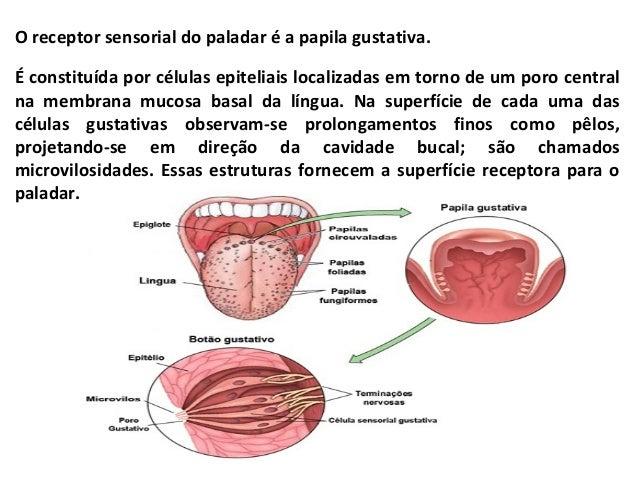 Trabalho de pesquisa relacionado a questГЈo das polГticas econГґmicas implementadas pelo Estado Brasileiro