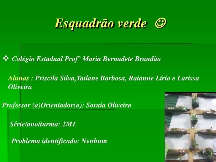 Esquadrão verde  Colégio Estadual Prof° Maria Bernadete Brandão Alunas : Priscila Silva,Tailane Barbosa, Raianne Lírio e...