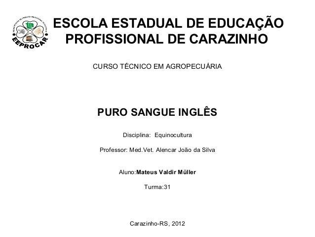ESCOLA ESTADUAL DE EDUCAÇÃO PROFISSIONAL DE CARAZINHO    CURSO TÉCNICO EM AGROPECUÁRIA     PURO SANGUE INGLÊS             ...