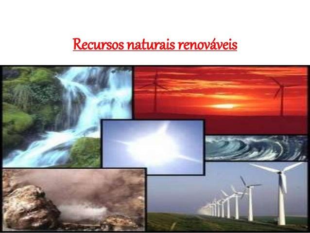 Recursos naturais renováveis