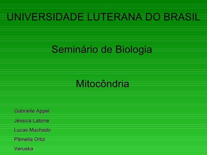 UNIVERSIDADE LUTERANA DO BRASIL                   Seminário de Biologia                        Mitocôndria Gabrielle Appel...