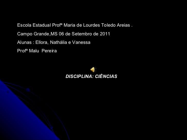 Escola Estadual Profª Maria de Lourdes Toledo Areias . Campo Grande,MS 06 de Setembro de 2011 Alunas : Ellora, Nathália e ...
