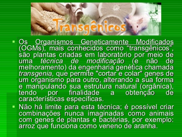 """<ul><li>Os  Organismos Geneticamente Modificados  (OGMs), mais conhecidos como """"transgênicos"""", são plantas criadas em labo..."""