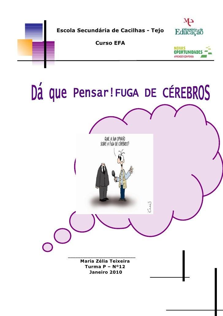 Escola Secundária de Cacilhas - Tejo               Curso EFA        ___________________________         Maria Zélia Teixei...