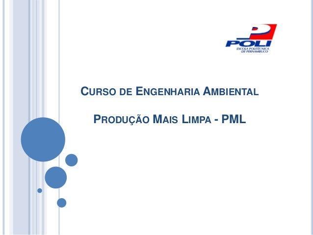 CURSO DE ENGENHARIA AMBIENTAL PRODUÇÃO MAIS LIMPA - PML