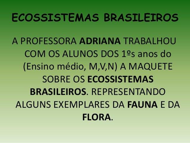 ECOSSISTEMAS BRASILEIROS A PROFESSORA ADRIANA TRABALHOU COM OS ALUNOS DOS 1ºs anos do (Ensino médio, M,V,N) A MAQUETE SOBR...