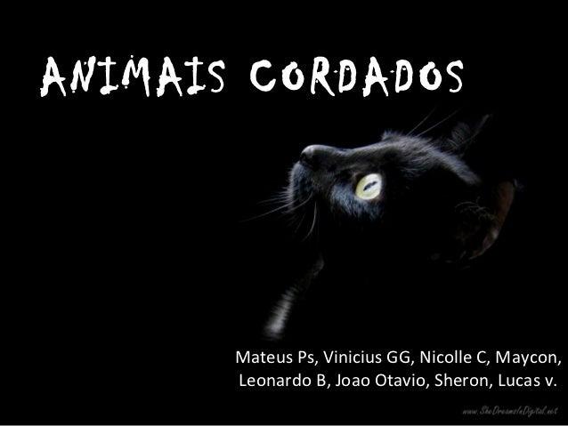ANIMAIS CORDADOS       Mateus Ps, Vinicius GG, Nicolle C, Maycon,       Leonardo B, Joao Otavio, Sheron, Lucas v.