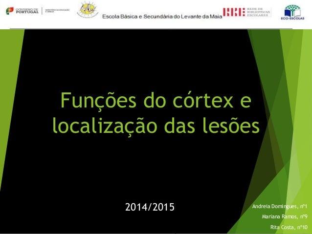 Funções do córtex e localização das lesões Andreia Domingues, nº1 Mariana Ramos, nº9 Rita Costa, nº10 2014/2015
