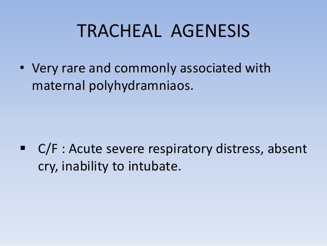 • Type 1 – Absent upper  trachea with lower trachea  connecting to the  oesophagus  • Type 2 – Common bronchus  connecting...