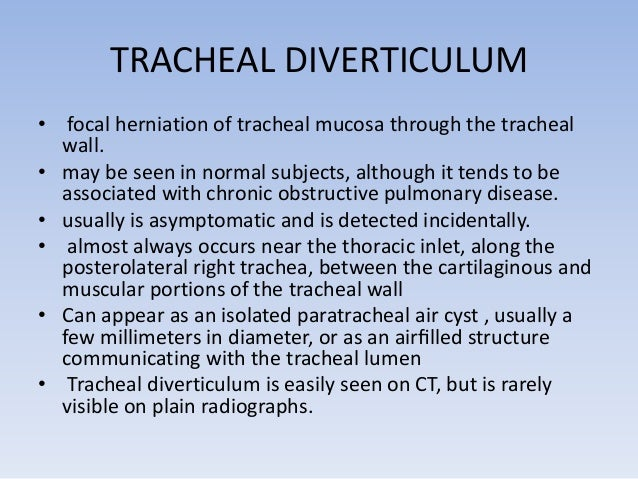 Heal diverticulum in a patient with chronic  obstructive pulmonary disease. A defect in the  right posterolateral tracheal...