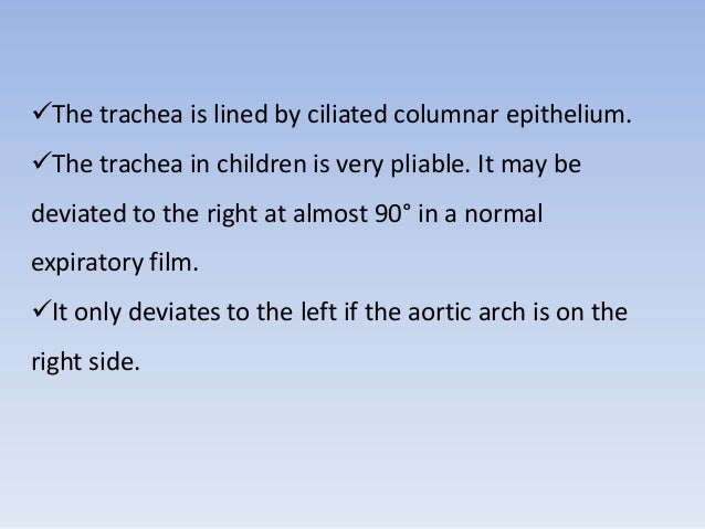 The trachea is lined by ciliated columnar epithelium.  The trachea in children is very pliable. It may be  deviated to t...
