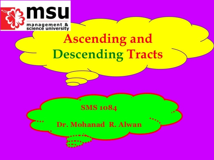 Ascending and  Descending  Tracts SMS 1084 Dr. Mohanad  R. Alwan