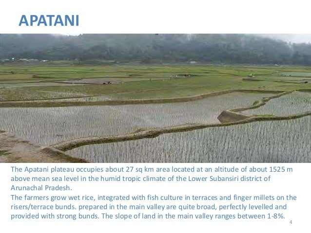 Traditional Water Harvesting In India Part 1