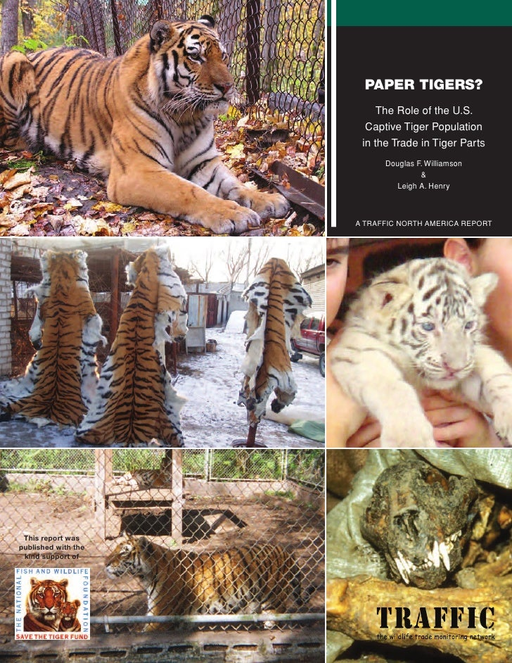 PAPER TIGERS?                          The Role of the U.S.                        Captive Tiger Population               ...