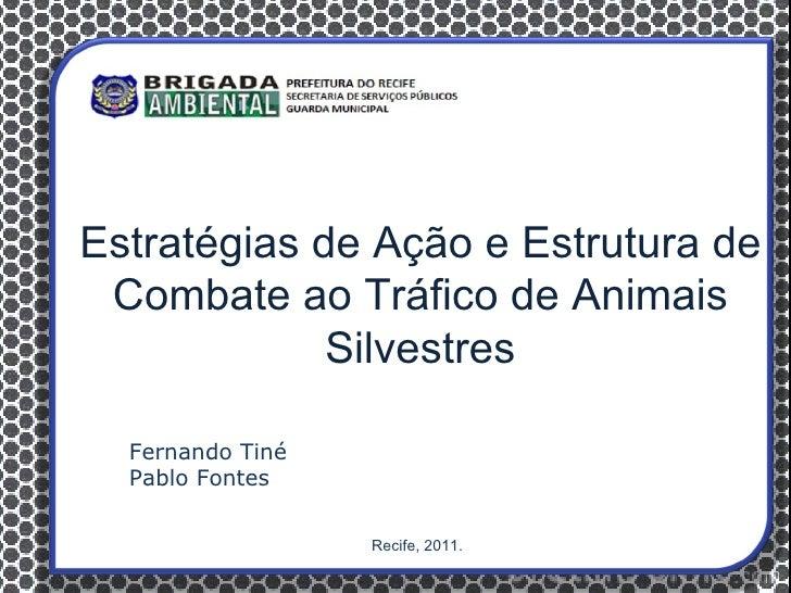 Estratégias de Ação e Estrutura de Combate ao Tráfico de Animais             Silvestres  Fernando Tiné  Pablo Fontes      ...