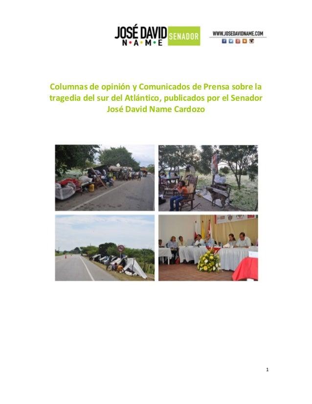 Columnas de opinión y Comunicados de Prensa sobre la tragedia del sur del Atlántico, publicados por el Senador José David ...