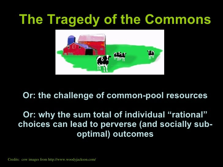 the tragedy of the commons essay Tragedy of the commons essay - let us help with your master thesis dissertations, essays and academic papers of top quality learn all you need to know about custom.