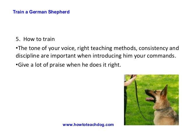 how to train a german shepherd