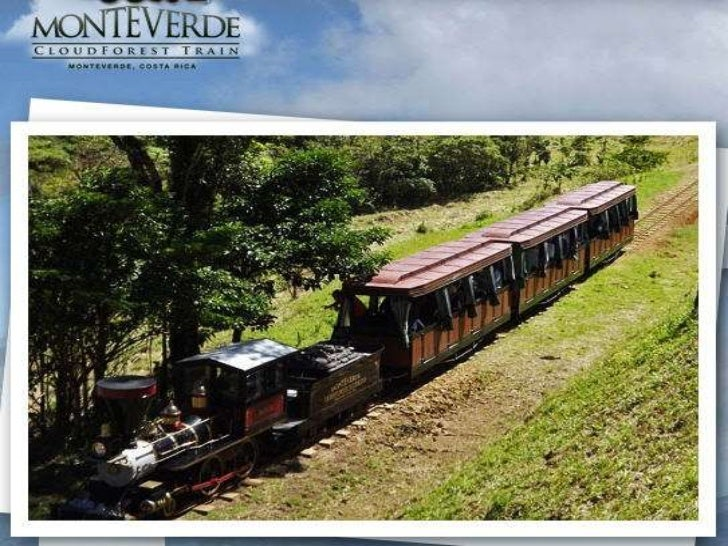The TrainTrainforest's two original reproduction trains were hand-crafted by British company, Severn Lamb, which hasbeen m...