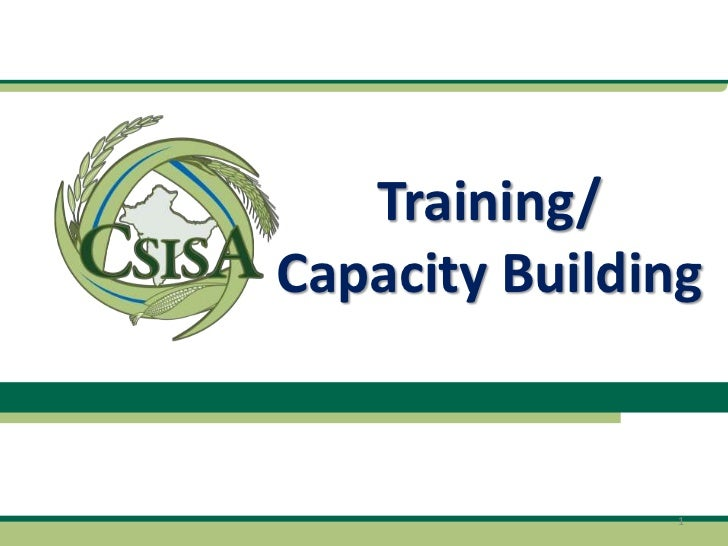 Training/Capacity Building                1