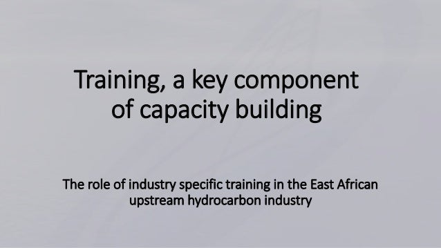 Training, a key component of capacity building The role of industry specific training in the East African upstream hydroca...