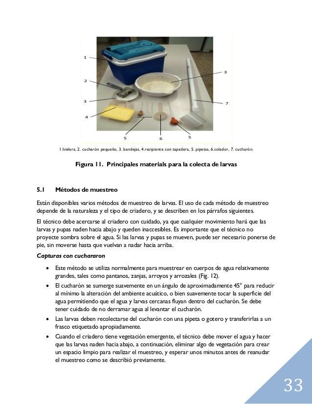 Training manualonmalariaentomology sp