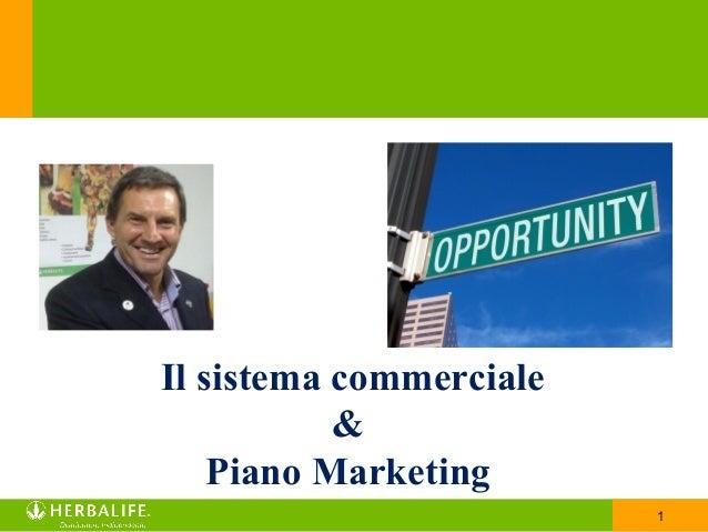 1 Il sistema commerciale & Piano Marketing