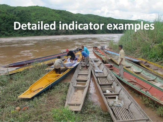 Detailed indicator examples