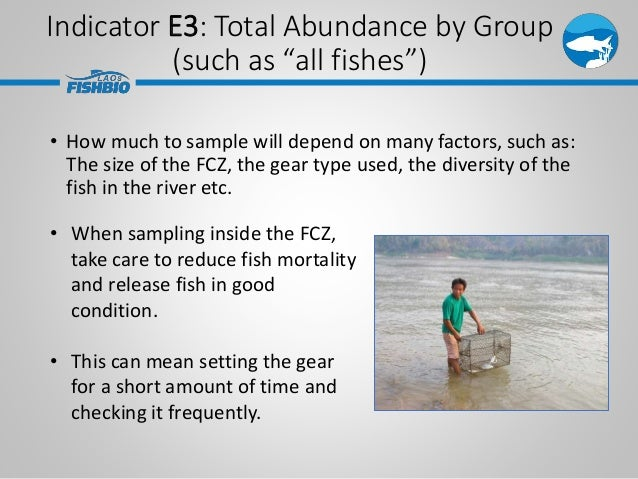 • How much to sample will depend on many factors, such as: The size of the FCZ, the gear type used, the diversity of the f...