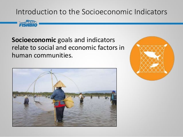 Introduction to the Socioeconomic Indicators Socioeconomic goals and indicators relate to social and economic factors in h...