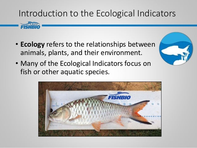 Introduction to the Ecological Indicators • Ecology refers to the relationships between animals, plants, and their environ...