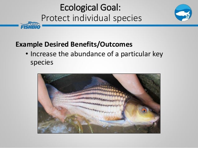 Ecological Goal: Protect individual species Example Desired Benefits/Outcomes • Increase the abundance of a particular key...